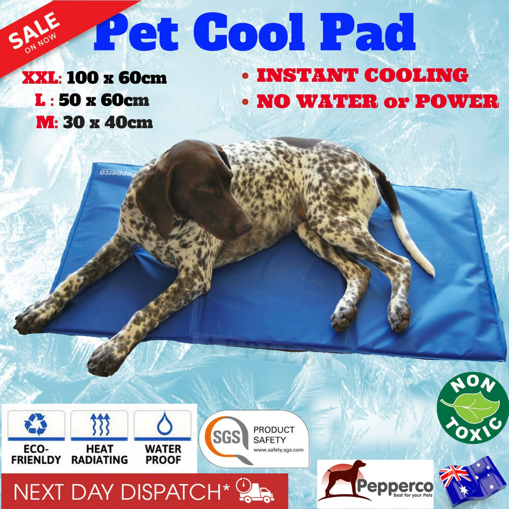 pet cooling mat non toxic cool gel pad cooling pet bed for. Black Bedroom Furniture Sets. Home Design Ideas