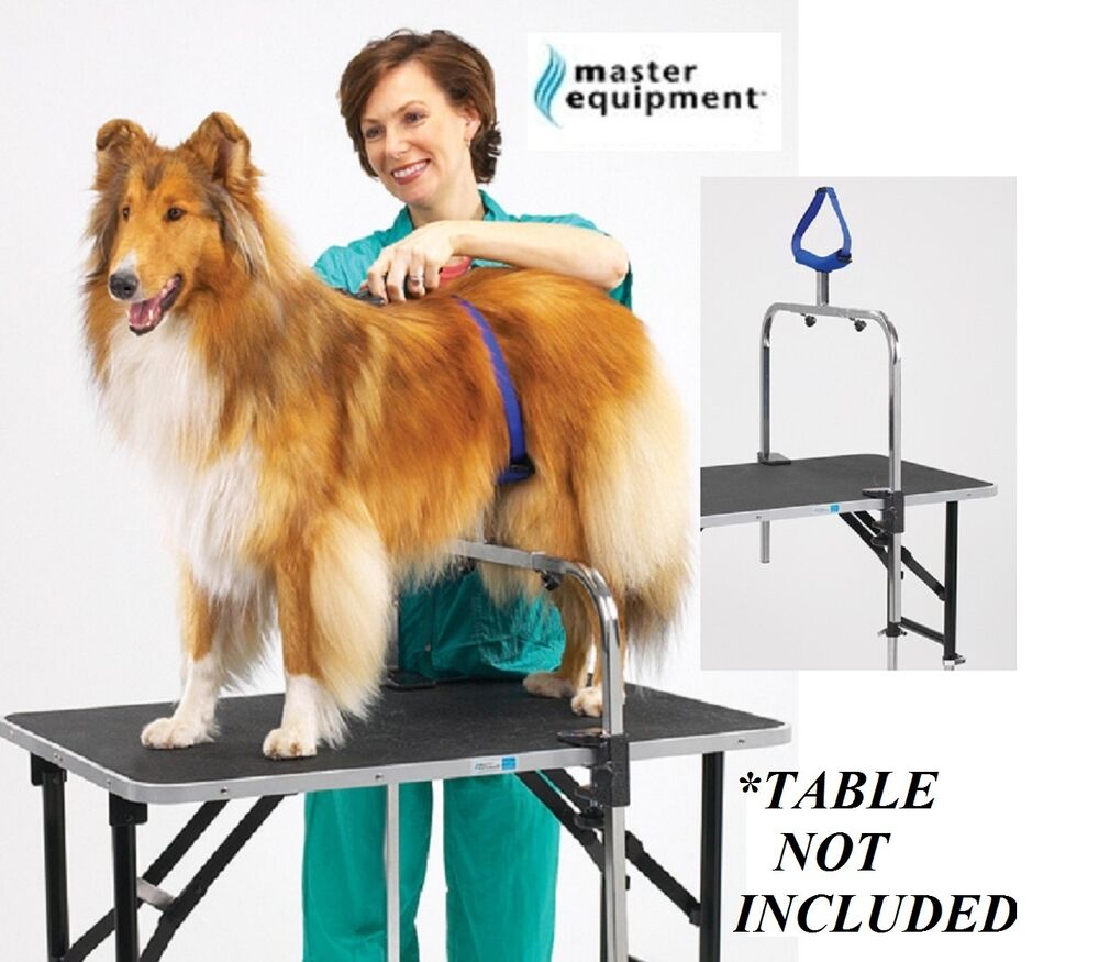 Show Dog Grooming Supplies