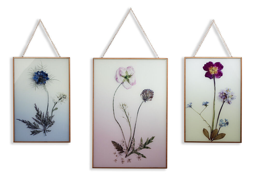 Wild flowers floral pretty set of 3 copper framed printed for Floral wall art