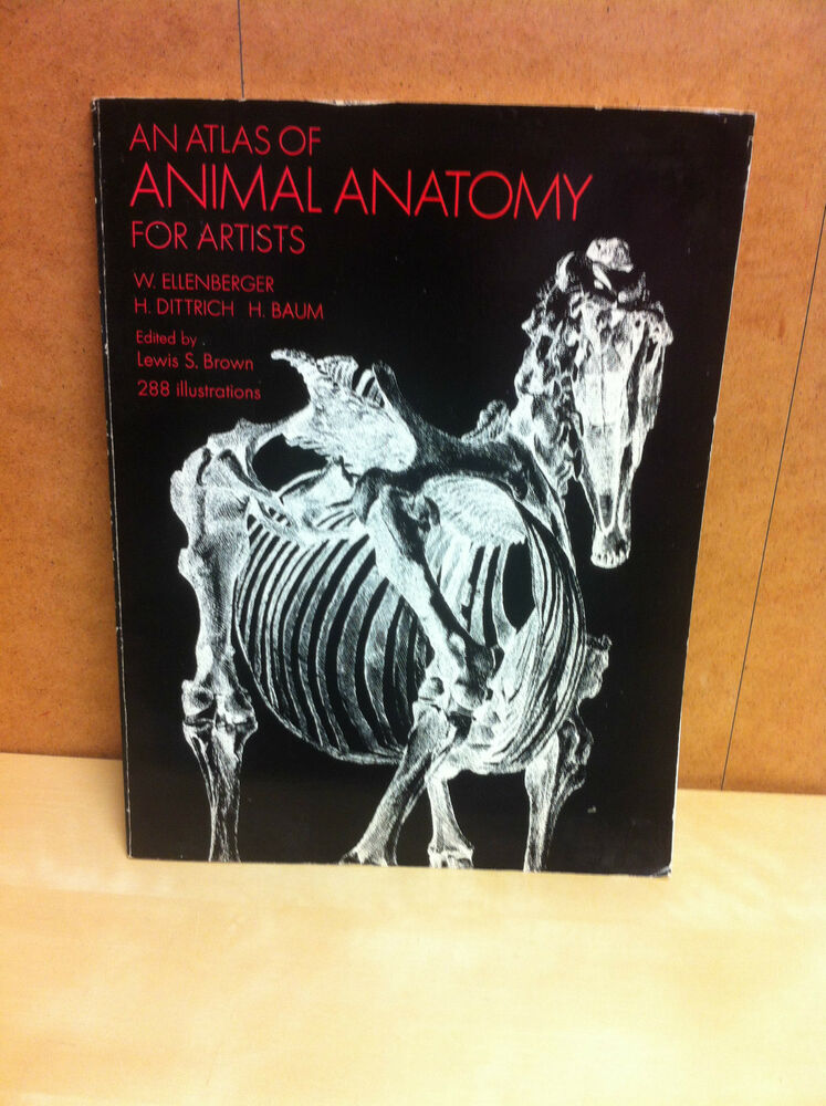Book - An Atlas of Animal Anatomy For Artists, W. Ellenberger, Dover ...