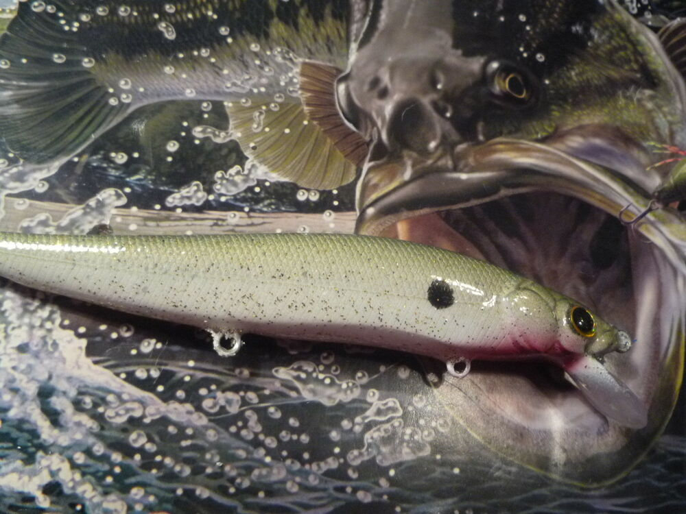 Custom painted megabass vision 110 style jerkbait minnow for Personalized fishing lures