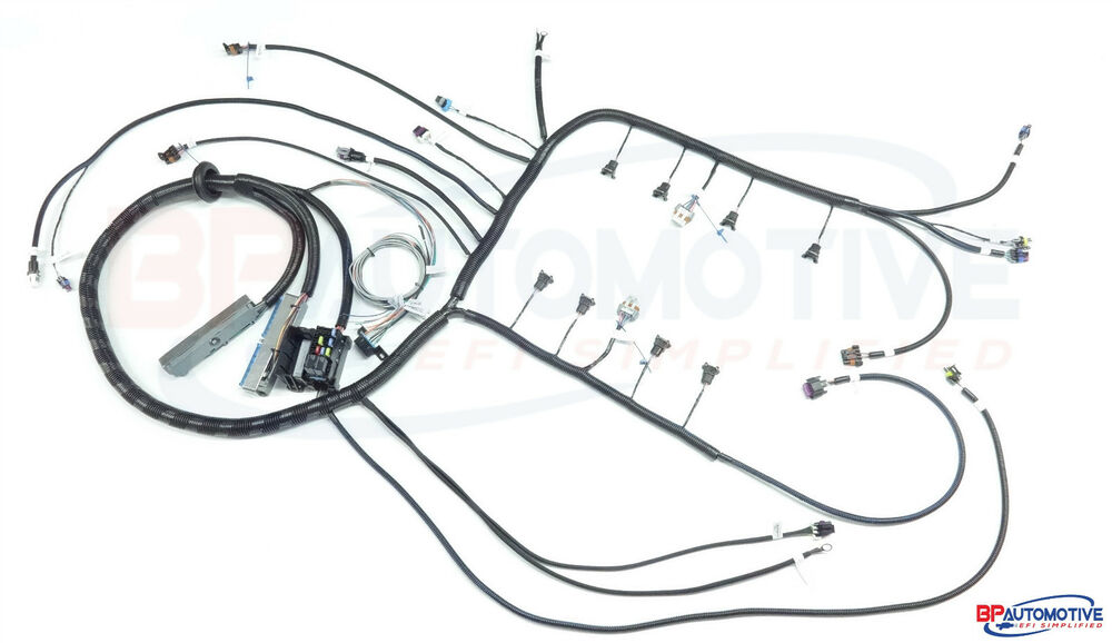 5 3 wiring harness diagram 1999-2006 dbc 4.8 5.3 6.0 vortec standalone wiring harness ...