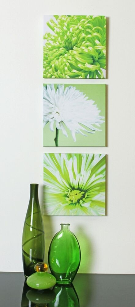 Lime green chrysanthemums flower floral set of 3 canvas for Lime green wall art