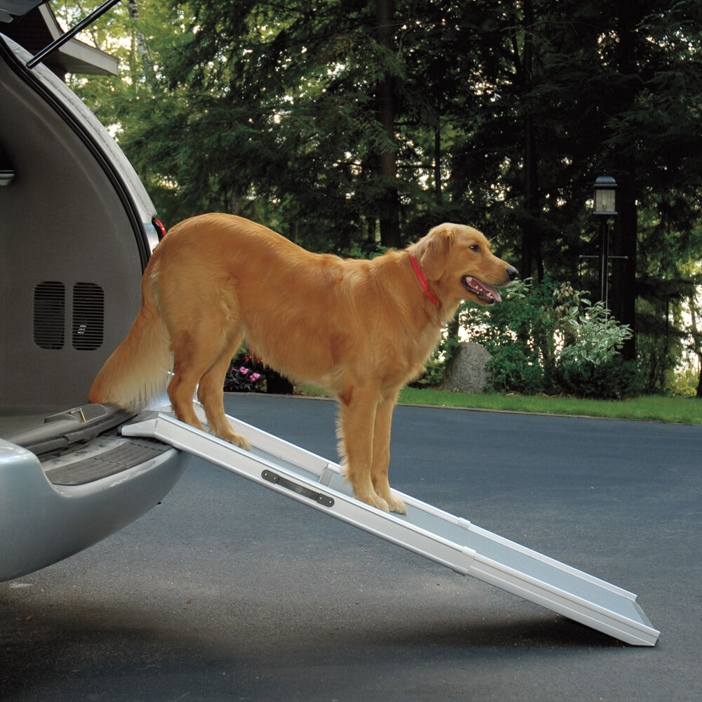 Dog Ramp For Truck >> Telescoping Dog Ramp For Suv Truck Or Car Solvit Pet Safety W