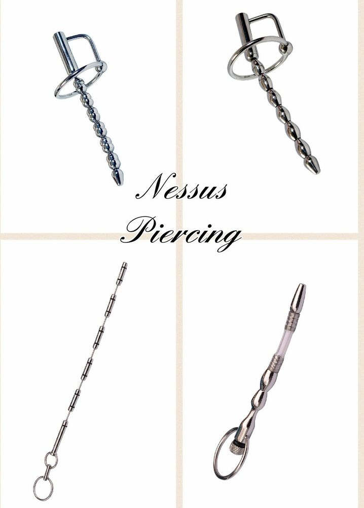 Prince Wand: Bead Urethral Sound Gland Ring Princes Wand Piercing