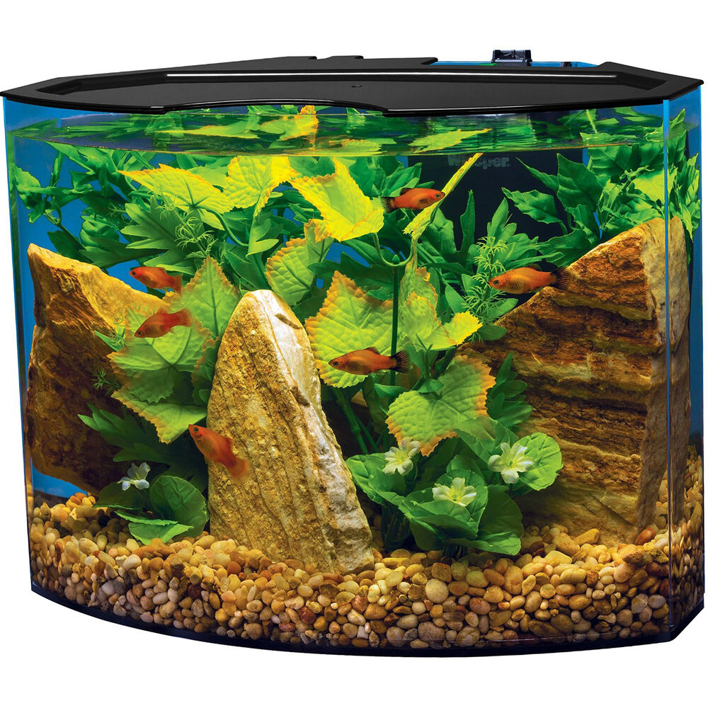 small acrylic illuminated aquarium kit 5gal fish tank led light with filter set ebay. Black Bedroom Furniture Sets. Home Design Ideas