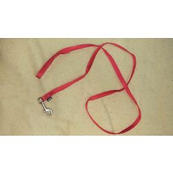Long Red Small Dog Leash