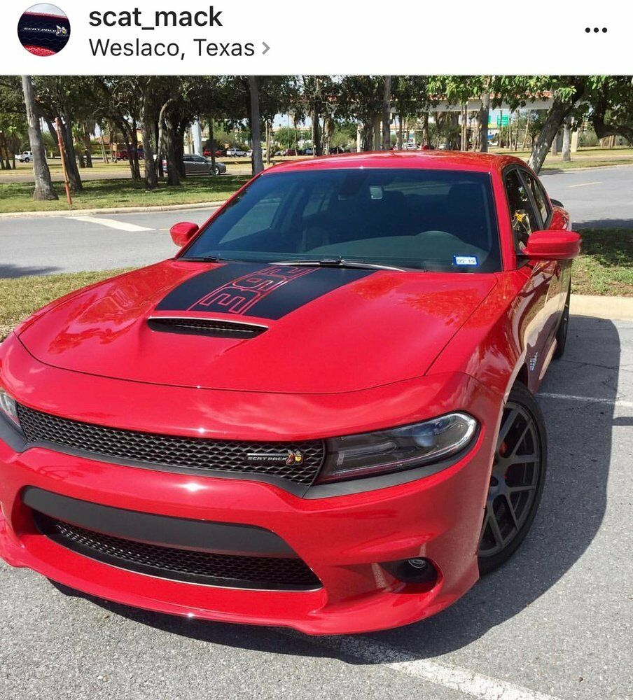 Dodge Charger 392 Daytona Style Hood Decal Scat Pack 2015