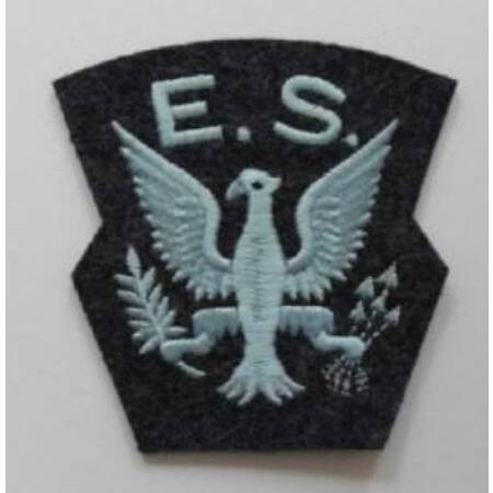 img-WWII. ROYAL AIR FORCE. EAGLE SQUADRON SHOULDER PATCH.