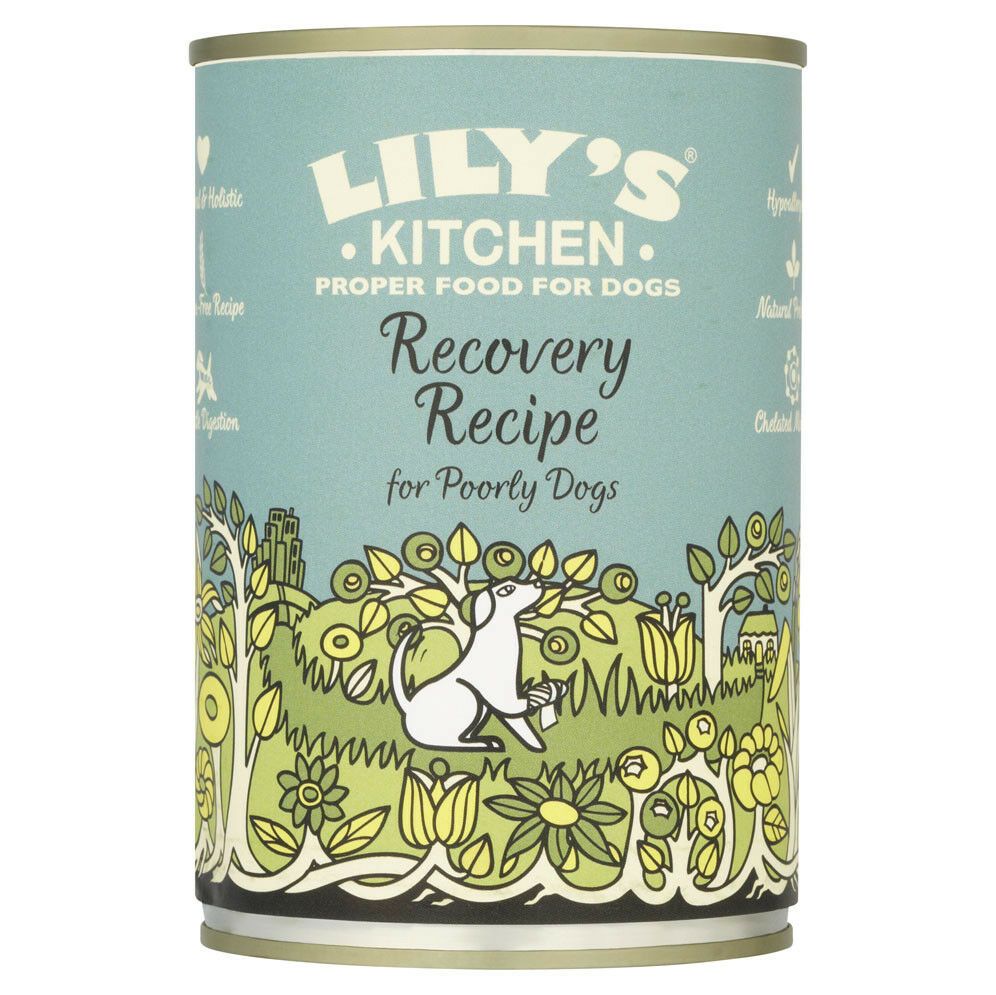 Lily\'s Kitchen Recovery Recipe for Poorly Dogs 400g | eBay