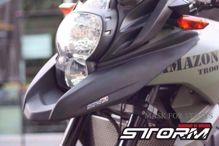 Storm Front Beak Bird Mouth For Kawasaki Versys 650 2010