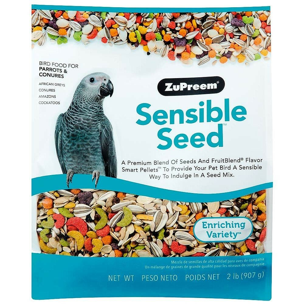 Image result for african grey parrot food