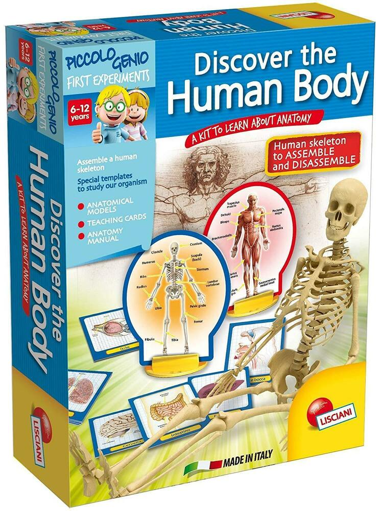 Kids Childrens Discover The Human Body Game Anatomy Skeleton Cards