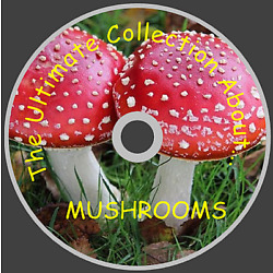 Mushrooms Toadstools Fungi About How to Grow Recipes edible - 51 books on DVD