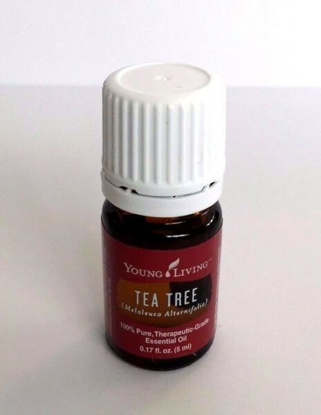 Young Living Essential Oils Tea Tree 5ml - New & Sealed - Free Shipping!