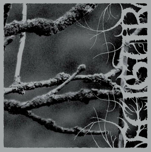 Feigur -  II, Desolation CD (Atmospheric, Ambient Black Metal)