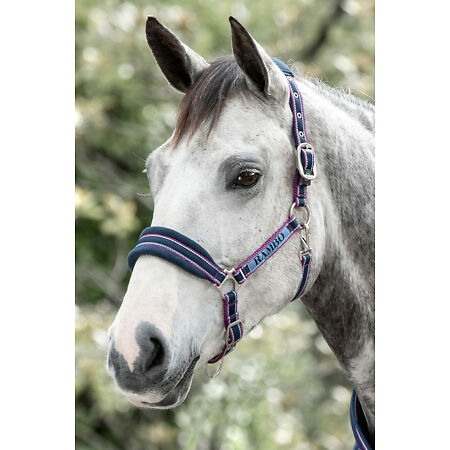 img-Horseware Rambo Soft Padded Headcollar Blue/Burgundy/Grey/Black/Navy/Gold P/C/F