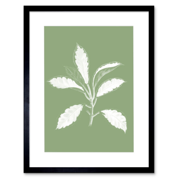 Royaume-UniWhite and Green Exotic Leaves Art Print Framed Poster Wall Decor