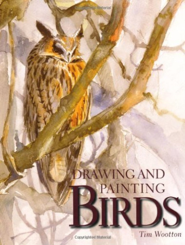 Royaume-UniWOOTTON, TIM- AND PAINTING BIRDS BOOK NEUF
