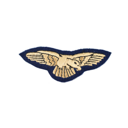 img-Preliminary Flying Pilot Qualification Badge – Royal Air Force (RAF)