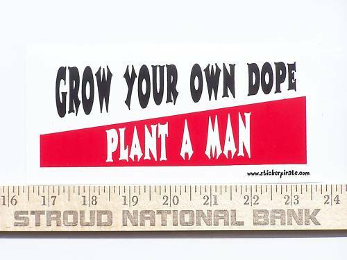 how to grow mendo dope
