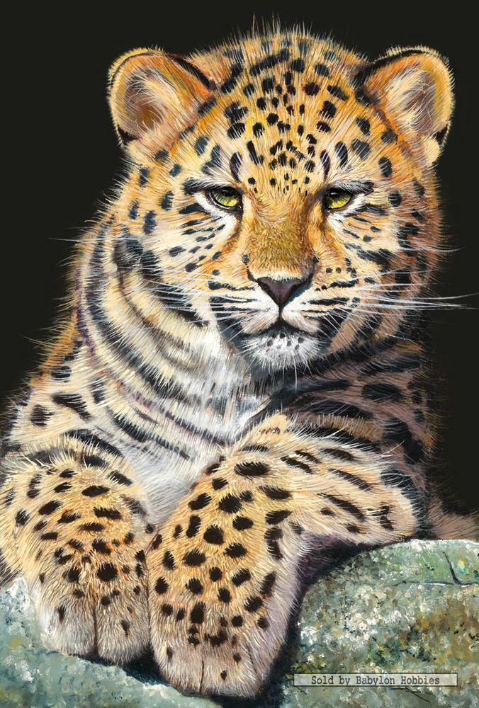 500 Pcs Jigsaw Puzzle Baby Leopard Animals Leopards