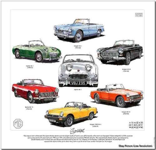 Find Austin Healey Sprite Mg Td: Austin Healey Sprite & MG