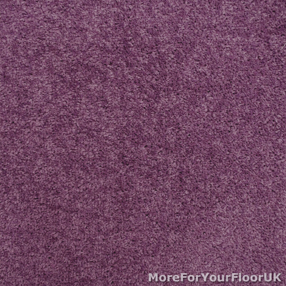Purple carpet violet feltback twist bedroom lounge for Dark purple carpet texture