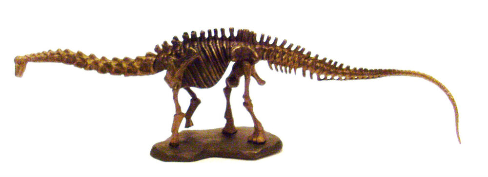 The gallery for --> Seismosaurus Dinosaur King