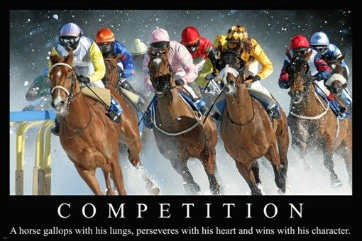 Horse Racing St Moritz Switzerland MOTIVATIONAL POSTER
