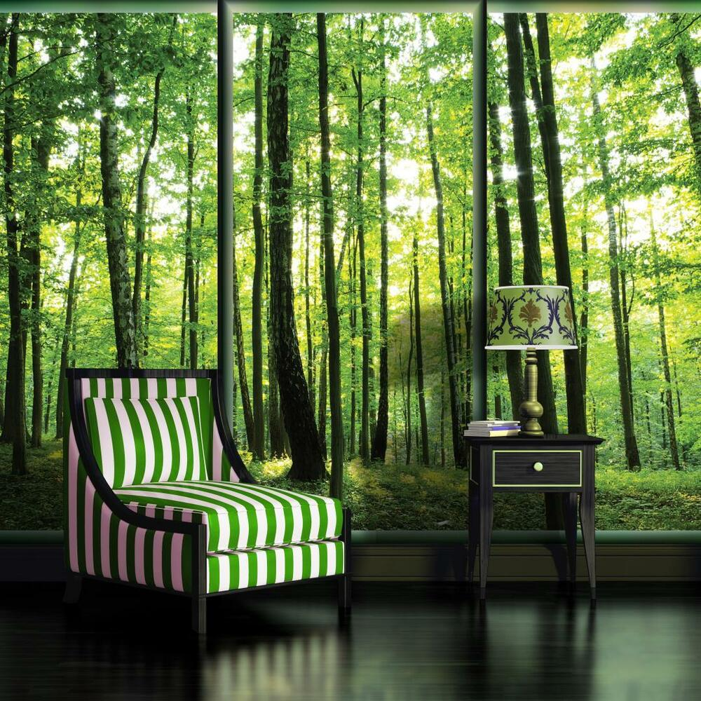 vlies fototapete fototapeten tapete tapeten birken wald baum natur 495 ve ebay. Black Bedroom Furniture Sets. Home Design Ideas