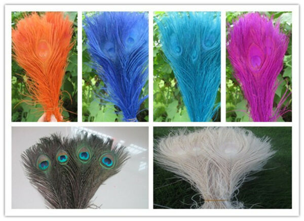 Wholesale Unique peacock feather eyes 10-12 inches 25-30 cm a variety of colors