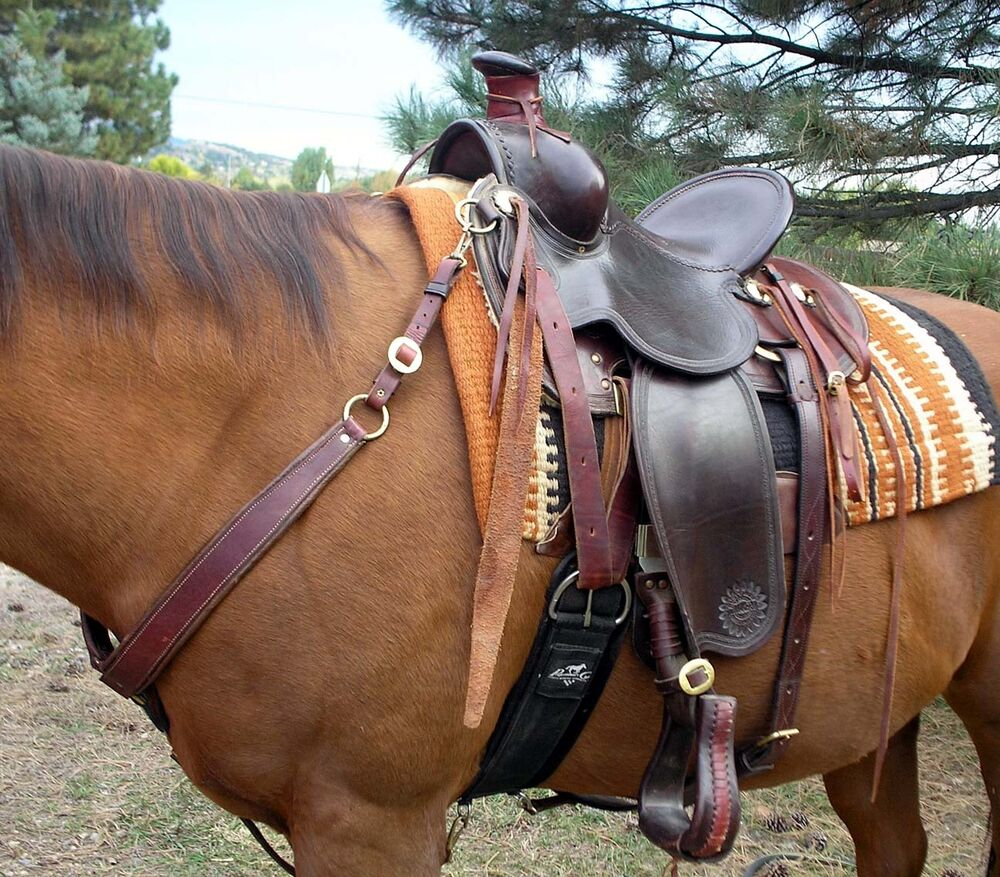 how to tell if the saddle fits your horse