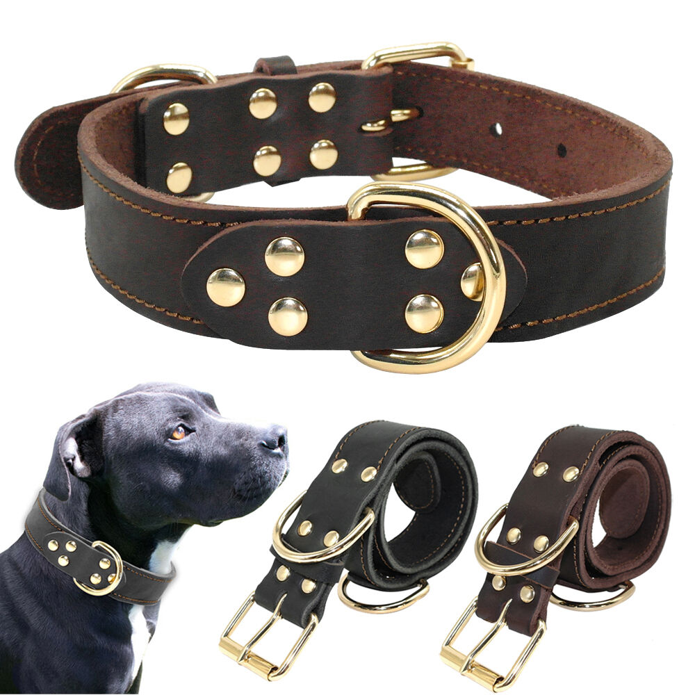 Best Leather To Make Dog Collars