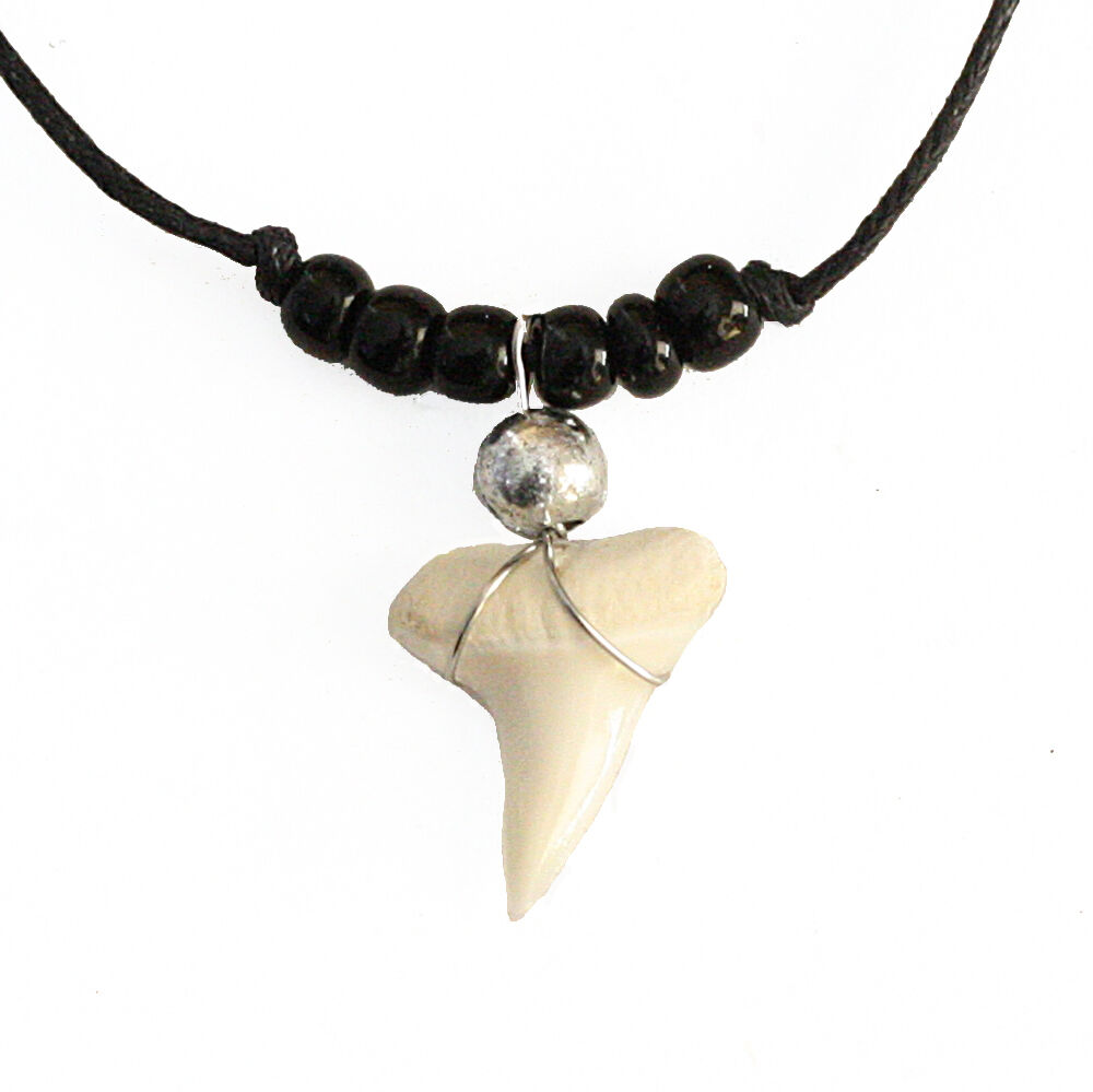 real shark tooth teeth pendant charm necklace with black