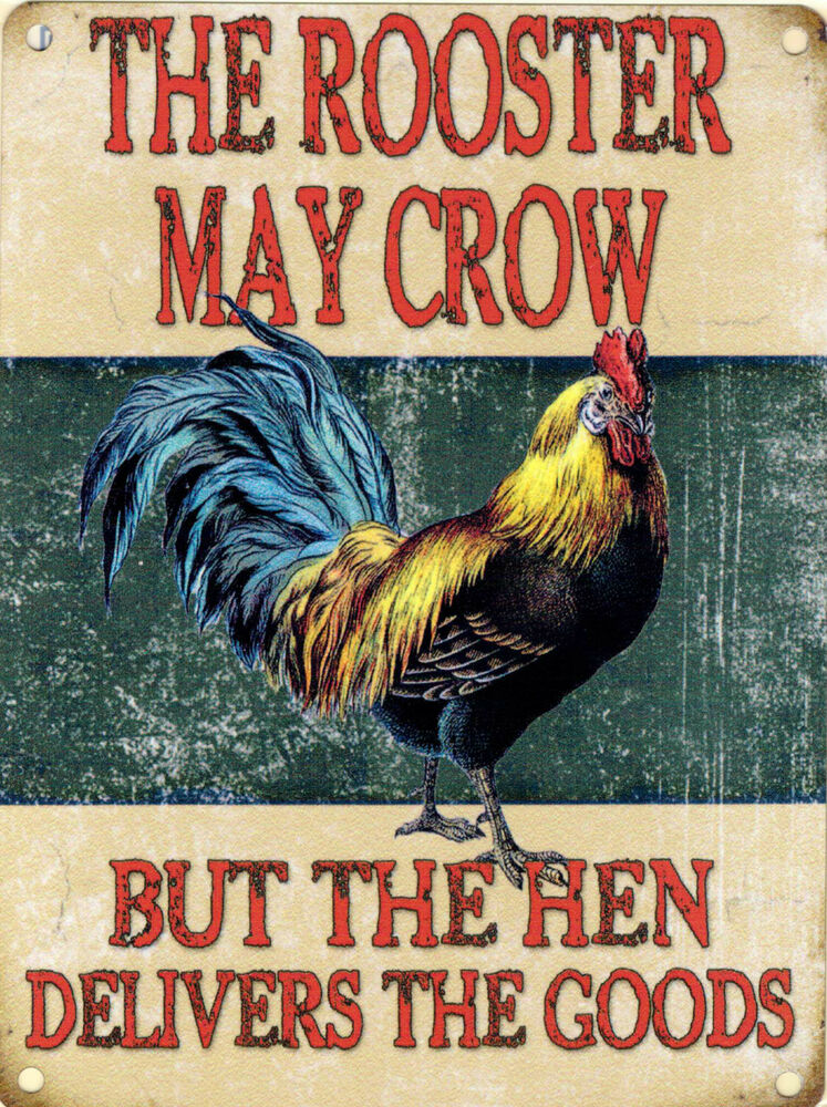 New 30x40cm Rooster May Crow Hen Vintage Enamel Style Tin. Striped Signs Of Stroke. Hand Writing Lettering. Scoll Banners. Iconic Signs Of Stroke. Decals Stickers. Camaro Decals. Custom Plastic Stickers. Ballybeen Murals