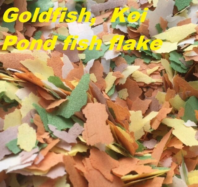 1kg 5kg 10kg goldfish koi outdoor garden pond coldwater