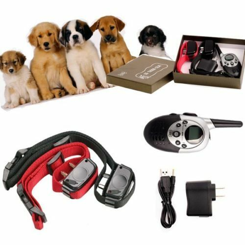 Electric Shock Collars For Hunting Dogs
