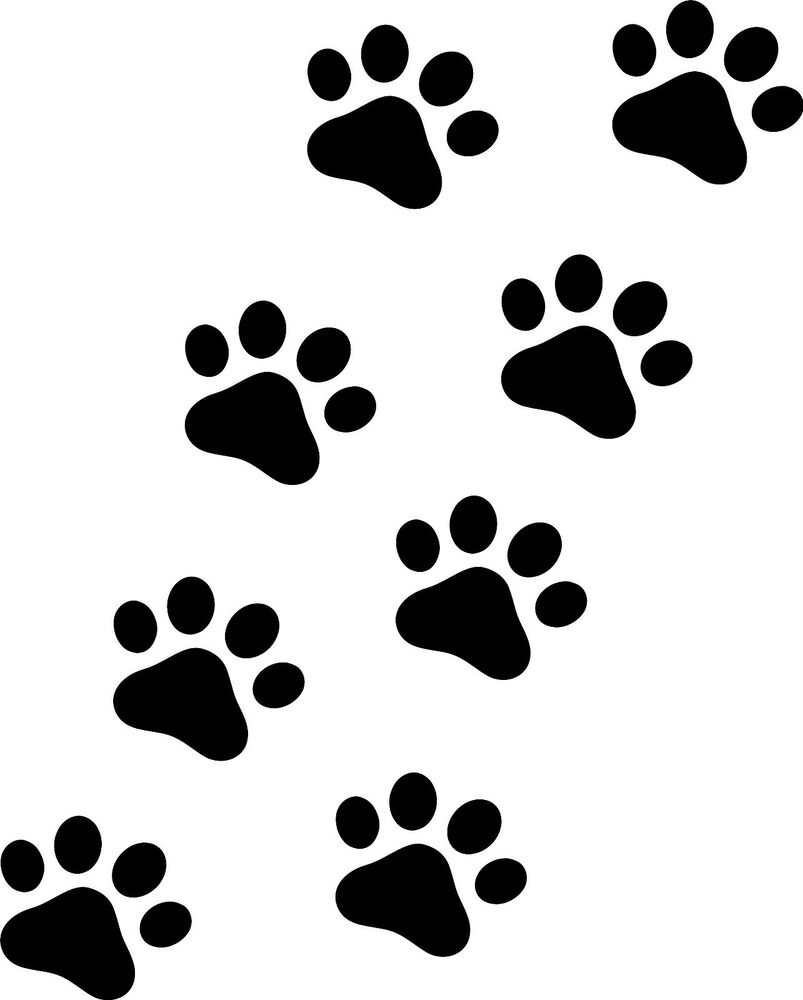 This is a picture of Tactueux Free Printable Paw Prints
