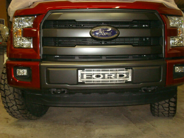 2015 ford f 150 ecoboost bumper grille stainless steel xlt design ebay for Ford f 150 exterior accessories