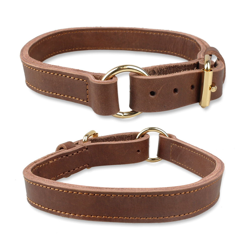 X Large Leather Dog Collars
