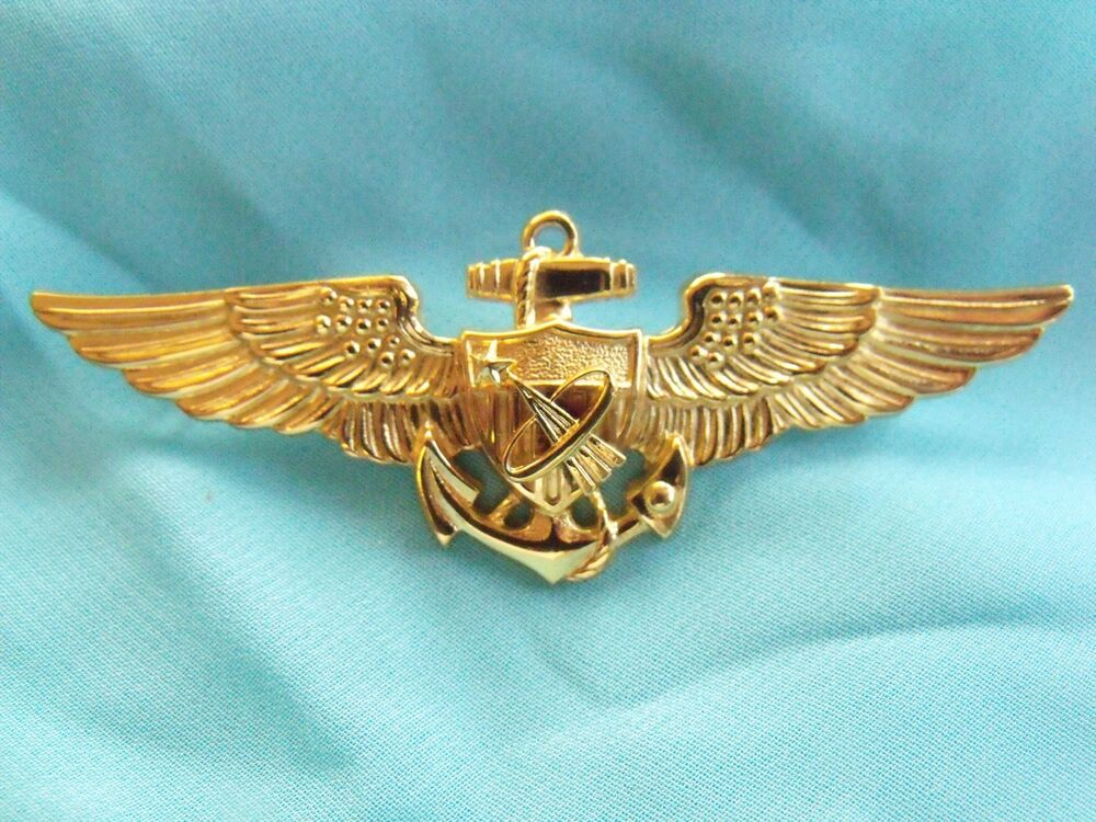 astronaut wings insignia - photo #18