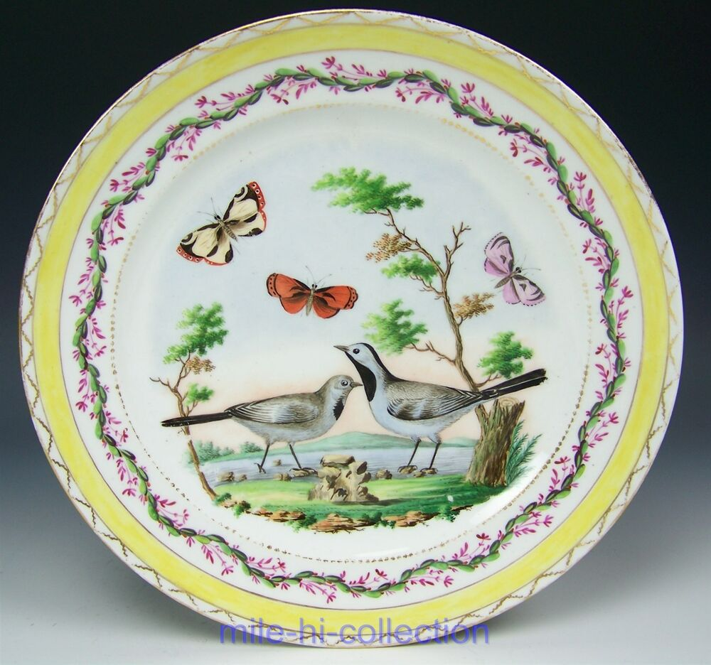 Hand Painted Plates : Sevres france hand painted birds butterflies cabinet