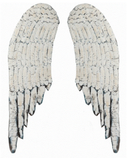Wood Wings Wall Decor : Large distressed pair of angel wings shabby french chic