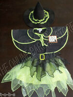 Pottery Barn Kids Halloween Witch Girls School Play Costume 12 18 24 Months Mos