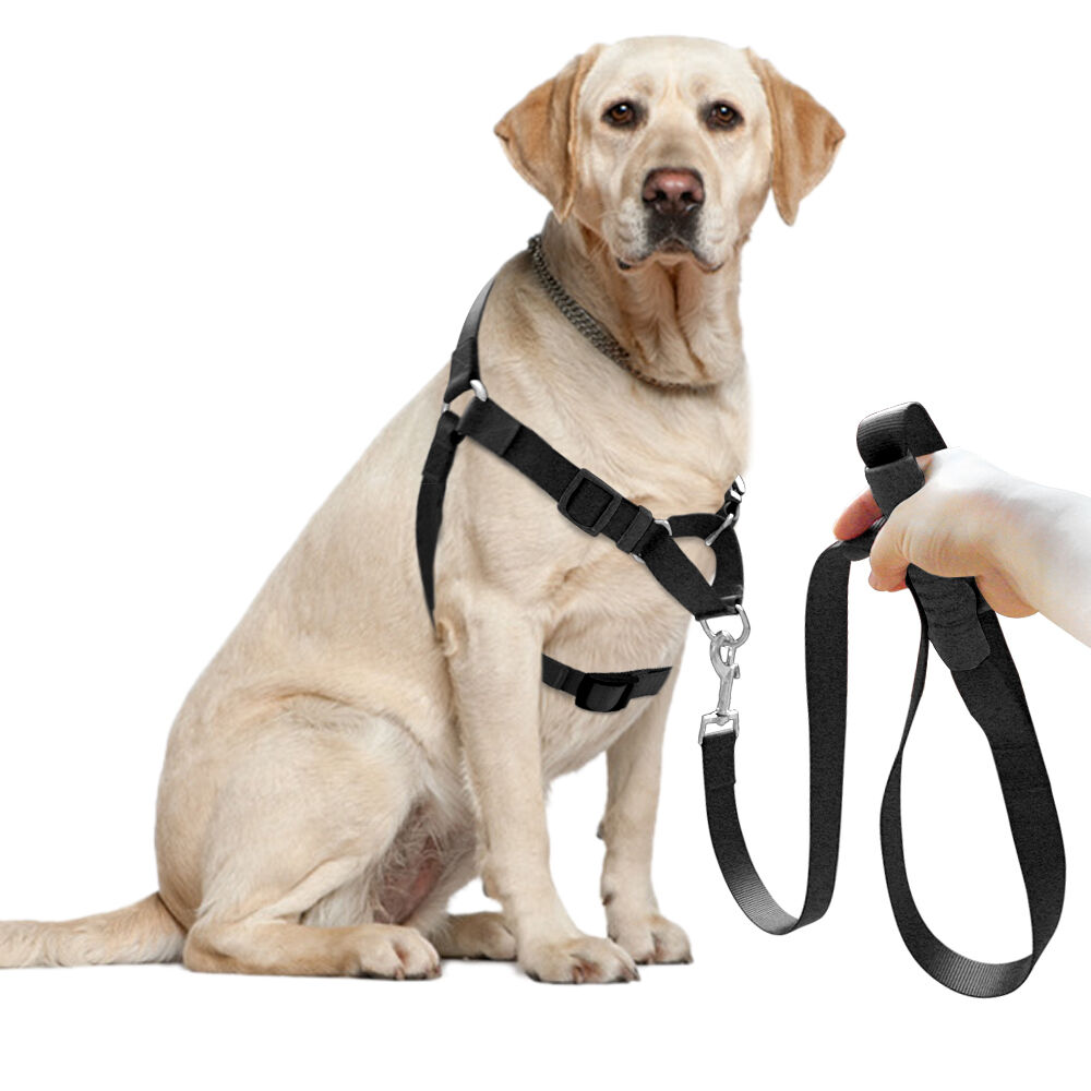 didog nylon front leading no pull pet dog harness walking collar leash set ebay. Black Bedroom Furniture Sets. Home Design Ideas