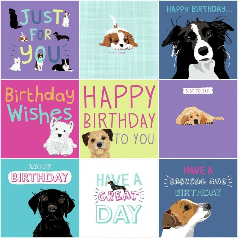 Dogs Trust Charity Blank Greeting Birthday Card By Waggy Tails Dog Lovers