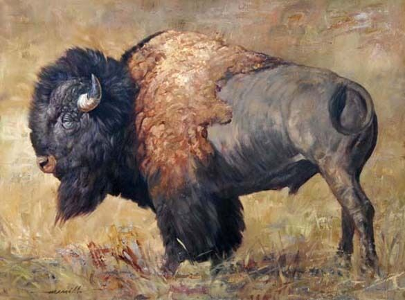 BUFFALO (BISON) STANDING -Art. One 16 inch Fabric Panel To ...
