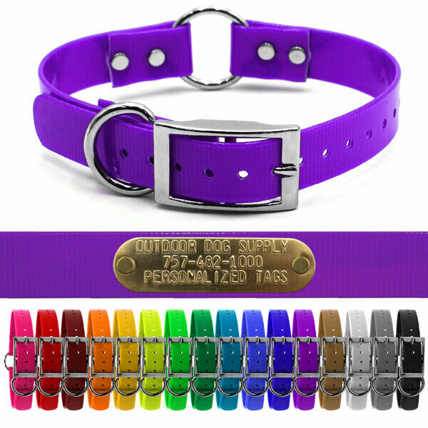 Hunting Dog Name Collar Strap 1 Quot Ring In Center Amp D Ring W