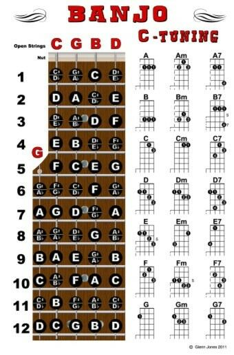 Banjo Chord Wall Chart Poster Fretboard Standard C Tuning 5 String Chords Notes : eBay